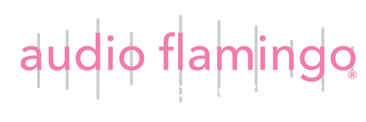 Audio Flamingo