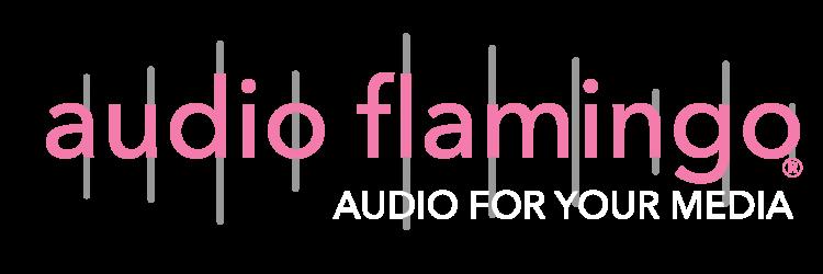 Audio Flamingo